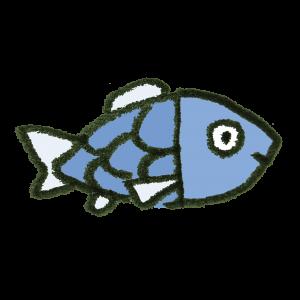 釣り初心者 ブログ